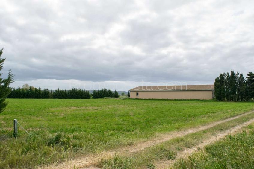 Albons, Finca de obra nueva con mucho terreno y vistas